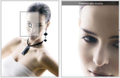 オシャレなサイトに使えそうな画像ズームが行えるjQueryプラグイン fig.1