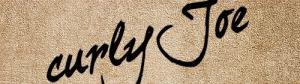 手書き風の英文フォント fig.2
