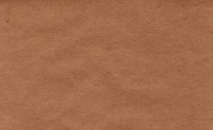 紙のテクスチャ fig.1